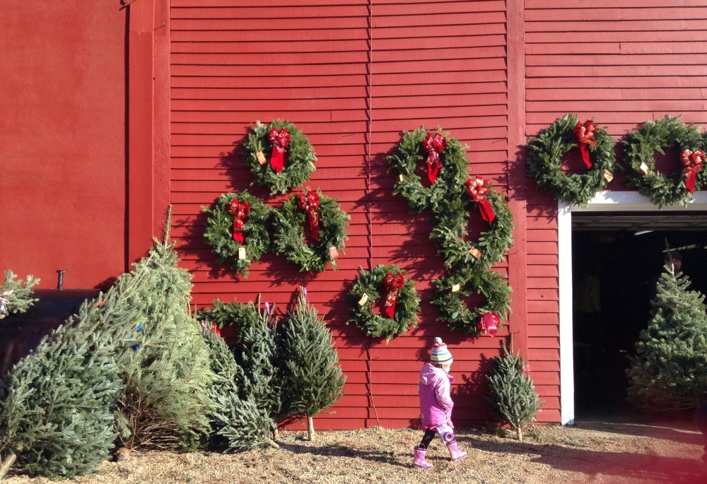 weve looked around the dallas fort worth metroplex to find christmas tree farms for you so cut your own tree this year for some old fashioned fun