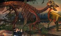 MuseumDinosaur-