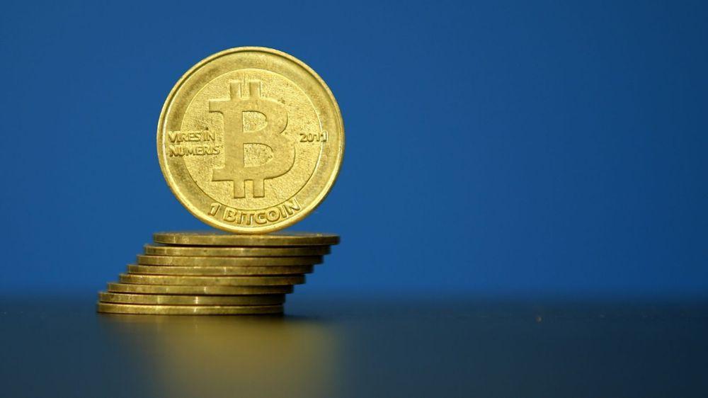 bitcoin-survival