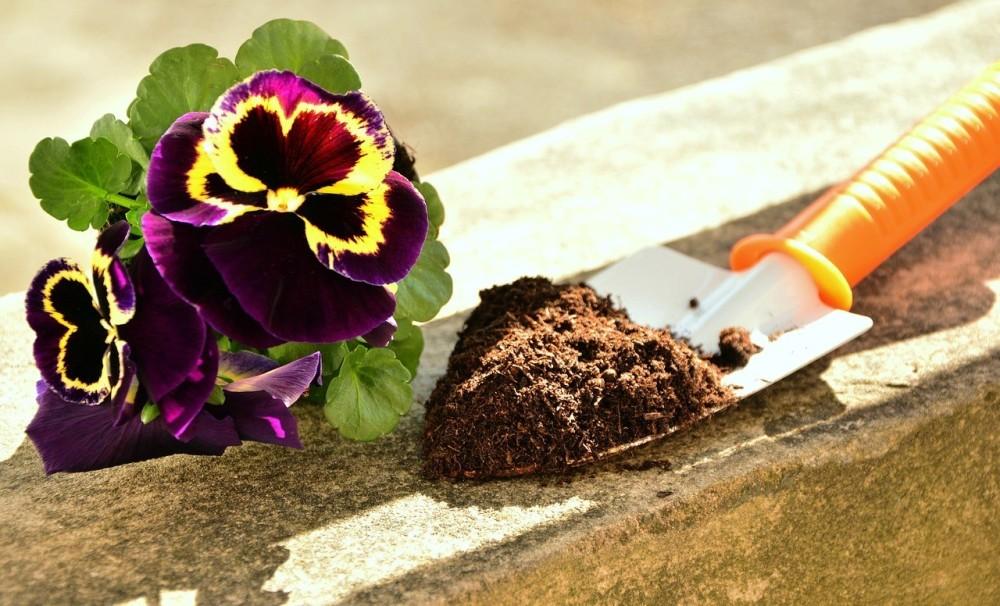 garden_soil_1523301497